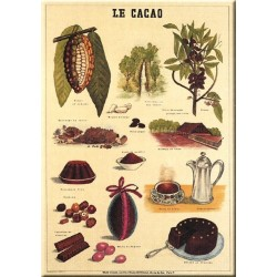 Plaque métal publicitaire 15x21cmbombée : LE CACAO.