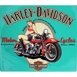 Plaque métal publicitaire embossée 33x38cm : HARLEY FREEDOM RIDERS.