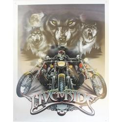 Plaque métal publicitaire 30 x 40 cm : Live to ride.
