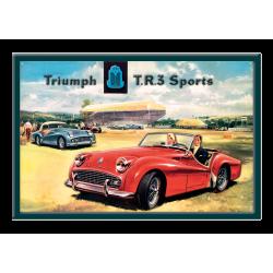 plaque métal publicitaire 20x30cm relief  : TRIUMPH TR3