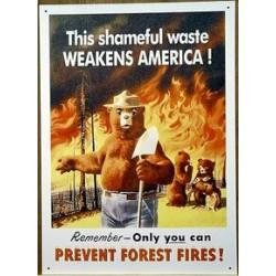 Plaque métal publicitaire 40 x 29cm plate : PREVENT FOREST FIRE