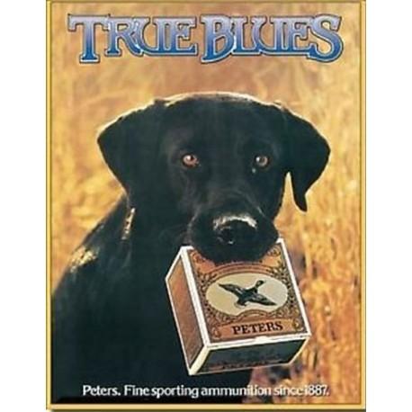Plaque métal décorative 41 x 32 cm plate : TRUE BLUES