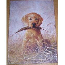 Plaque métal décorative 40 x 30 cm plate : LR KAATZ GOLDEN