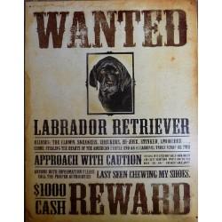 Plaque métal décorative 40 x 32 cm plate : WANTED LABRADOR RETRIEVER