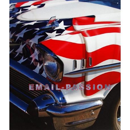 Plaque métal publicitaire 30 x 40 cm : US America