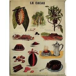 Plaque métal publicitaire 30x40 cm plate,  bisotée  : LE CACAO.