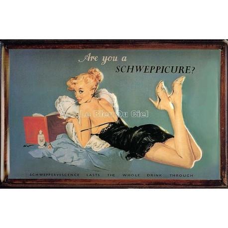 Plaque métal publicitaire 20x30cm bombée en relief : Are You a Schweppicure ?