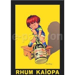 Plaque métal publicitaire 15x21cm bombée : Rhum Kaiopa.