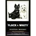 Plaque métal publicitaire 20x30 cm bombée en relief : Black and White Scotch Whisky.