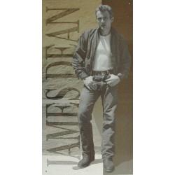 Plaque métal publicitaire 30x40 cm plate : James Dean la légende.