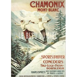 Plaque métal publicitaire 30x40cm bombée : Chamonix Mont-Blanc