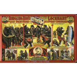 Plaque métal publicitaire 20x30 cm bombée en relief : Ringling Bros.