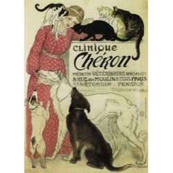 Plaque métal publicitaire 15x21cm plate : Clinique Chéron.