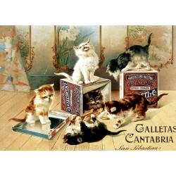 Affiche publicitaire cartonnée épaisseur 3mm  dim : 50x70cm  : Galletas Cantabria