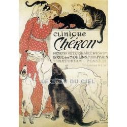 Pour votre décoration intérieure, Affiche publicitaire dim : 50x70cm Clinique Chéron