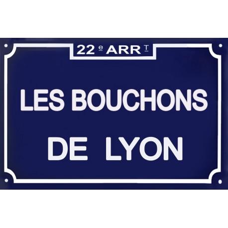 Plaque de Rue émaillée  LYON 20x30cm .