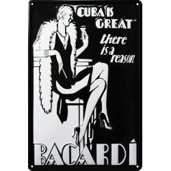 Plaque métal publicitaire 20x30 cm bombée en relief :  Bacardi